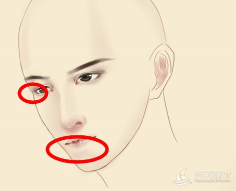 两只眼睛看的方向不一致 右眼小了  虽然两个眼睛有透视 但是不会大小